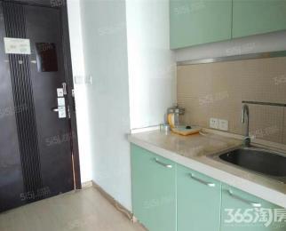 紫鑫国际公寓 河西CBD 邻地铁 精装单室套