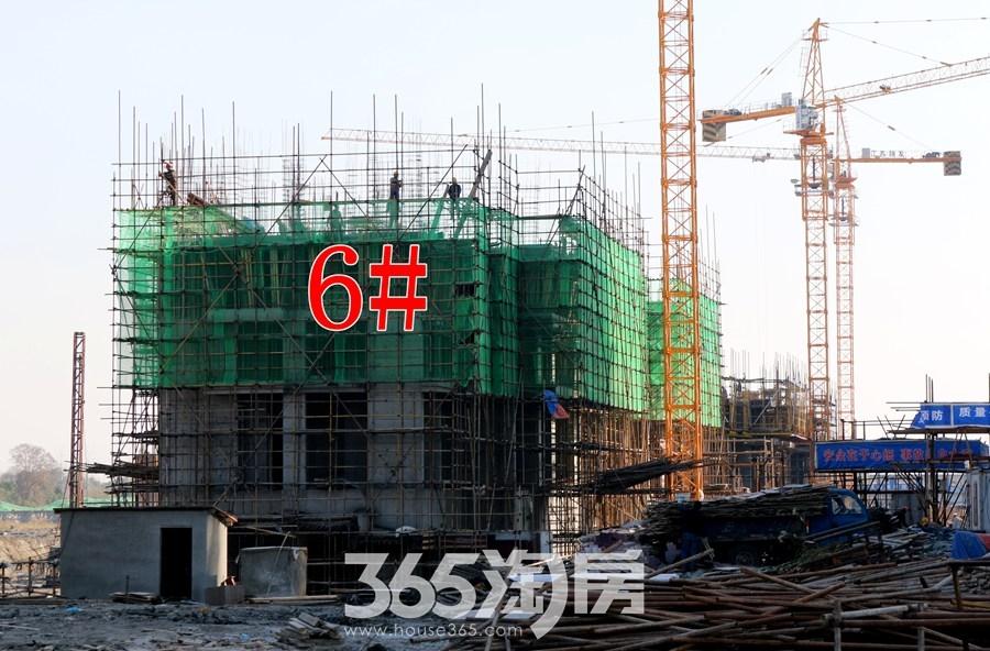 信德悦城6#施工中(2017.12摄)