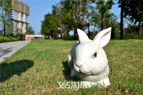 万科海上传奇小兔子景观小品(2016年7月摄)