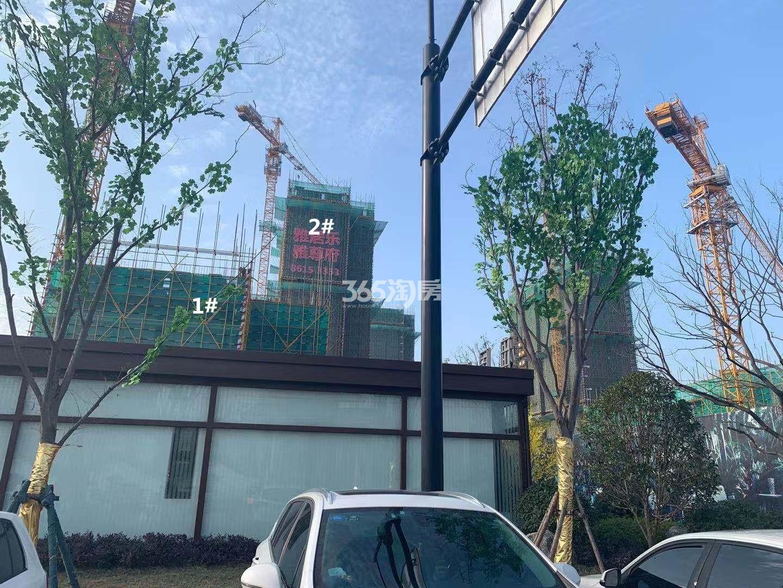 雅居乐雅尊府1、2号楼实景图(12.30)