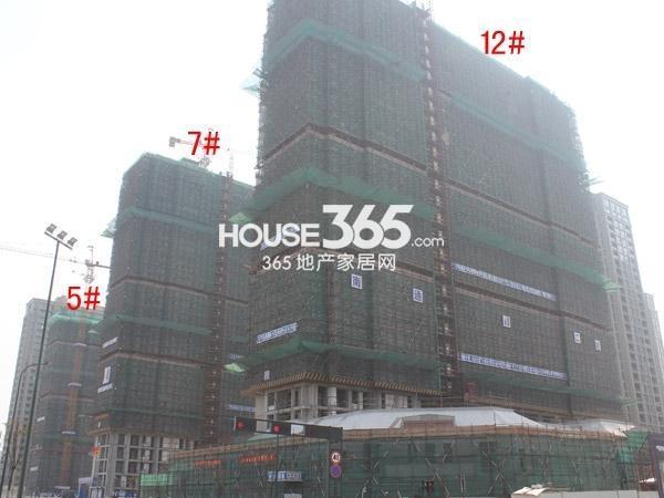 绿城玉兰广场5#、7#、12#楼工程进度图(2015.4)