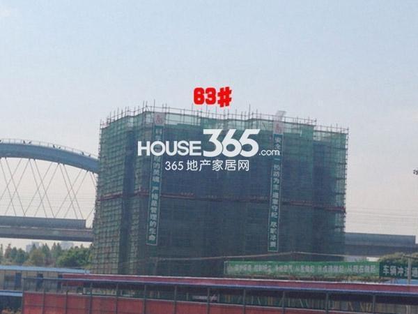 九洲花园缇香郡63#工程进度(2015.4)