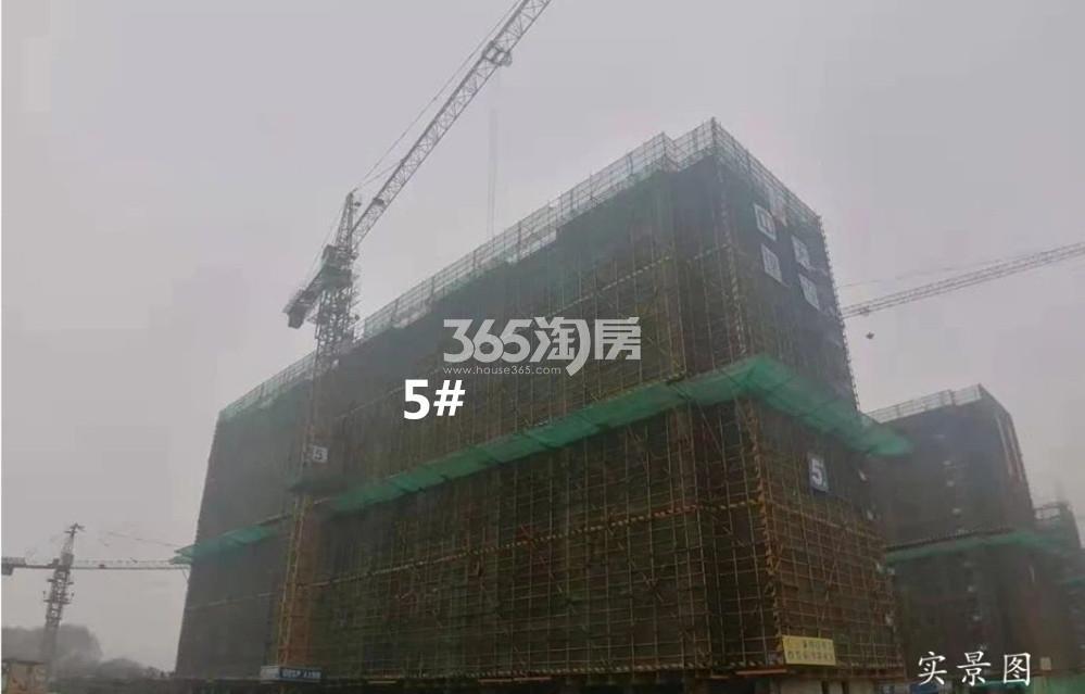 颐和九里5号楼实景图(12.31)