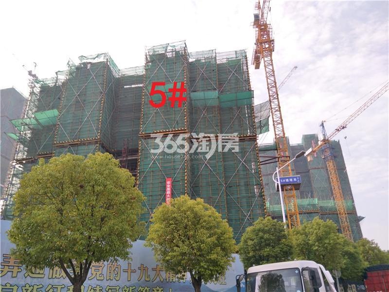 珍宝岛熙悦府在建5#楼实景图(3.29)