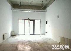 紫艺华府 沿街独立门面 免费曾送同面积地下室 总价低收益高