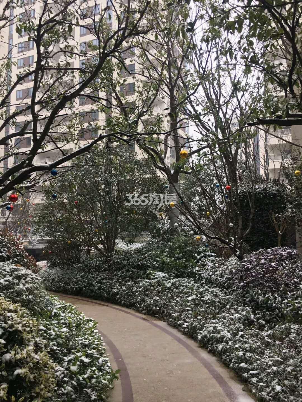 2018年1月德信海德公园园区雪景