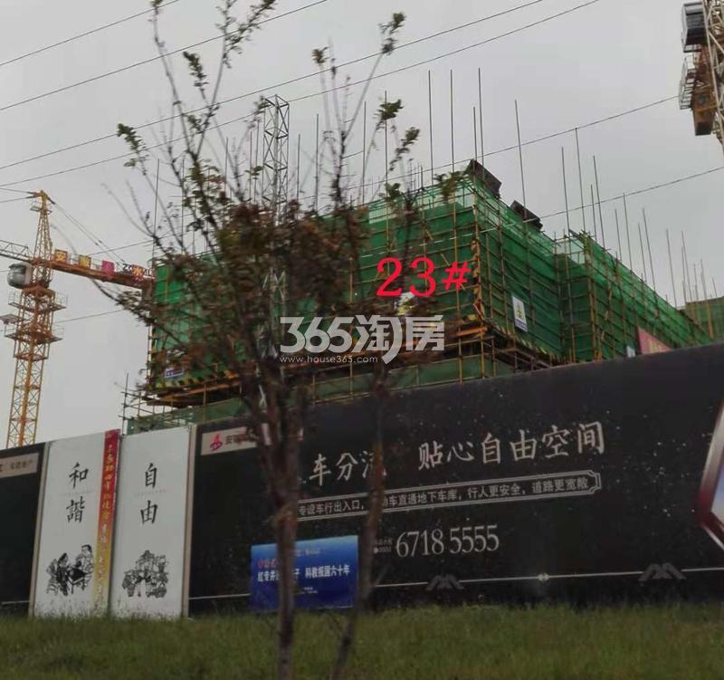 安建翰林天筑项目工程进度实景图(12.03)