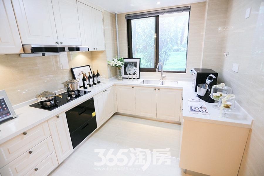 伟星公园天下林语约150平样板间-厨房