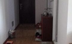 新站生态公园隆昊昊博园 1室1厅1卫 60平米