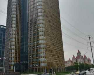 百家湖 国际企业总部园 九龙湖畔 临靠俊杰大厦环保大厦 平层