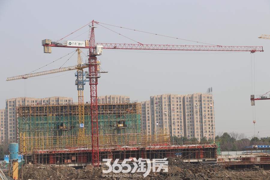 保利信达熙悦府项目工程进度图(2018.3摄)