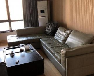 奥体 仁恒G53 精装两房公寓式住房 拎包入住 挑高户型