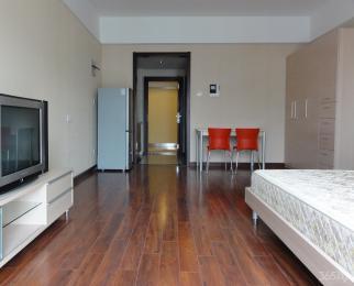 无锡滨湖万达广场单身公寓1室1厅1卫52平米精装整租