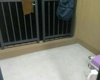 (转租单间)胜稼红星嘉园20平米带阳台主卧 九堡四季青旁 口