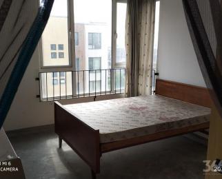 伟星凤凰城3室毛坯房急售,全款价格可议