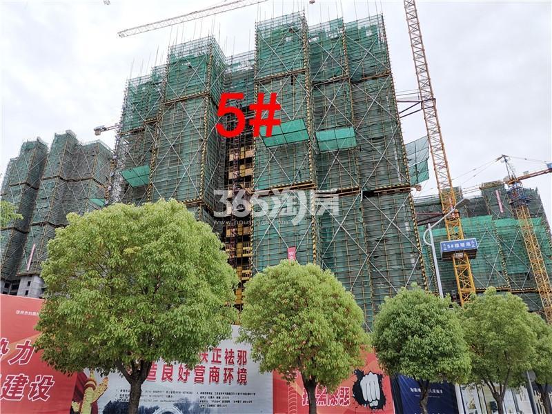 珍宝岛熙悦府在建5#楼实景图(5.30)