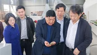 庐江文化旅游节新闻发布