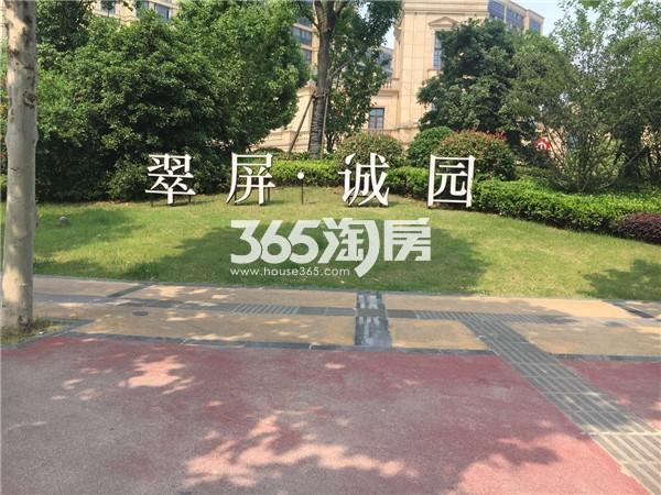 翠屏诚园绿化(9.5)