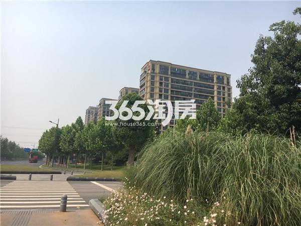 翠屏诚园远景图(9.5)