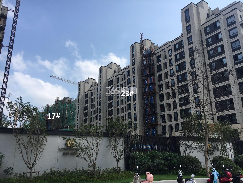保利云禧17、23号楼小高层实景图(8.18)
