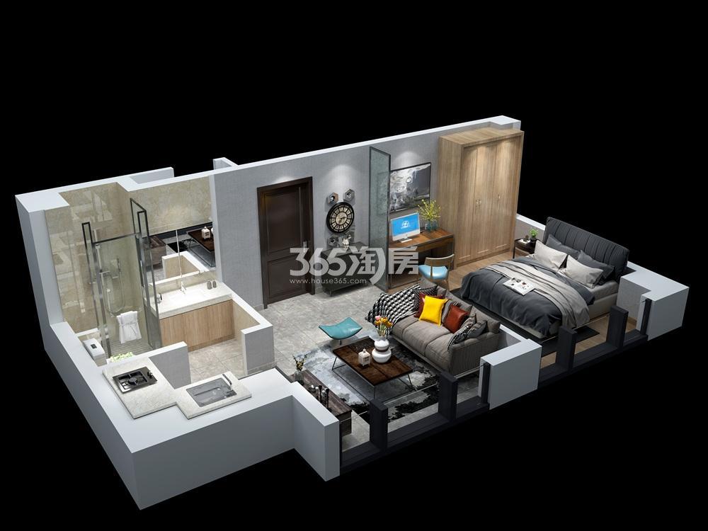 汉中公馆50㎡公寓户型图