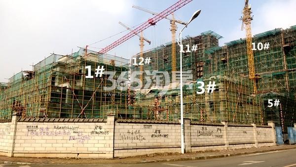 洛城·紫园高层11#、12#楼及1#、3#、5#联排别墅实景(2018.2)
