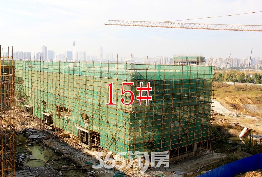 云谷科技园15#施工中(2017.11摄)