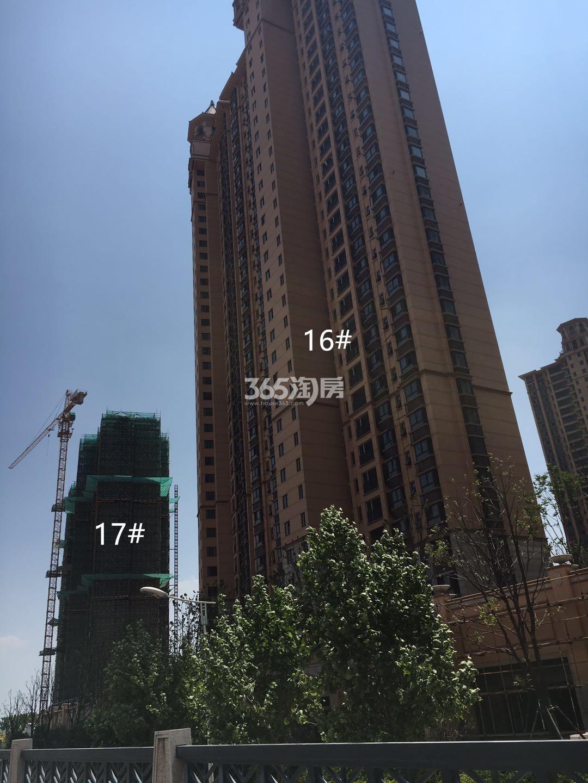 雅居乐滨江国际17、16号楼实景图(5.15)