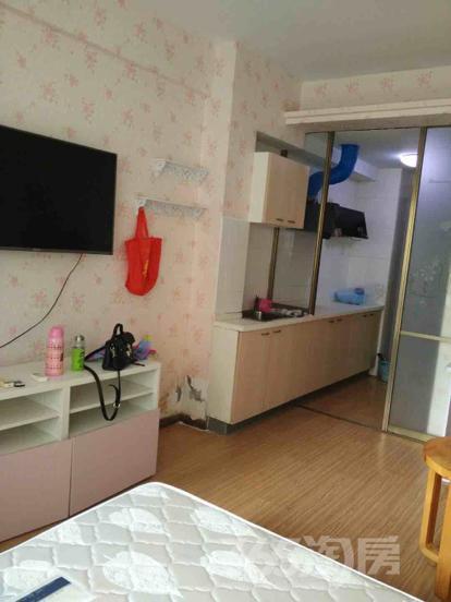 托乐嘉1室1厅1卫35平米整租精装