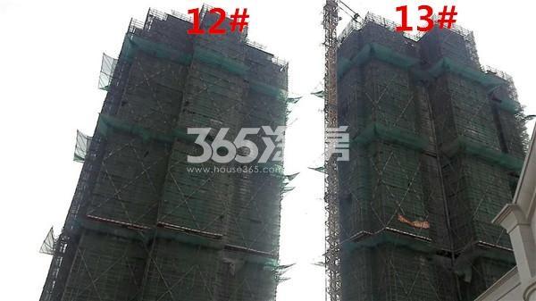枫林天下康城高层12、13#楼在建实景图(11.14)
