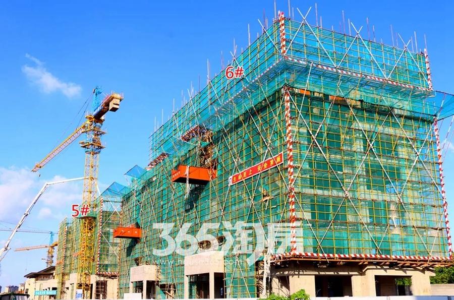 伟星公园天下5#、6#工程进度图(2018.8摄)