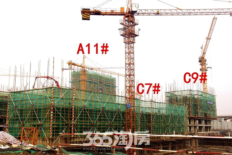 汀海壹品A11#、C7#、C9#楼12月工程进度(2018.12摄)