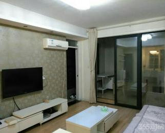 中环城紫荆公馆1室2厅1卫72平米整租豪华装