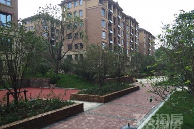 仙林翠谷九曲花街 花园洋房 顶楼带阁楼 有电梯 环境好