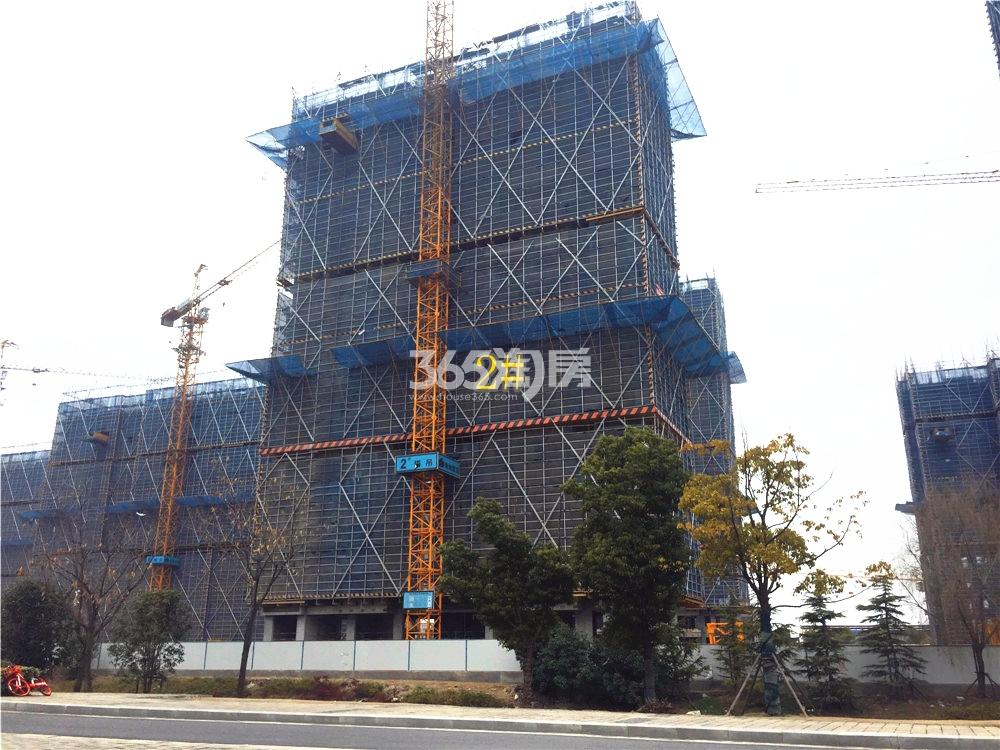 绿地华侨城海珀滨江2#实景图(2.24)
