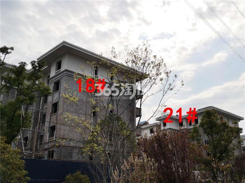 鼓楼紫云府项目工地18、21#楼实景图(3.27)
