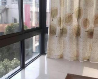 长江长现代城二期单身公寓1室0厅1卫40平米整租精装