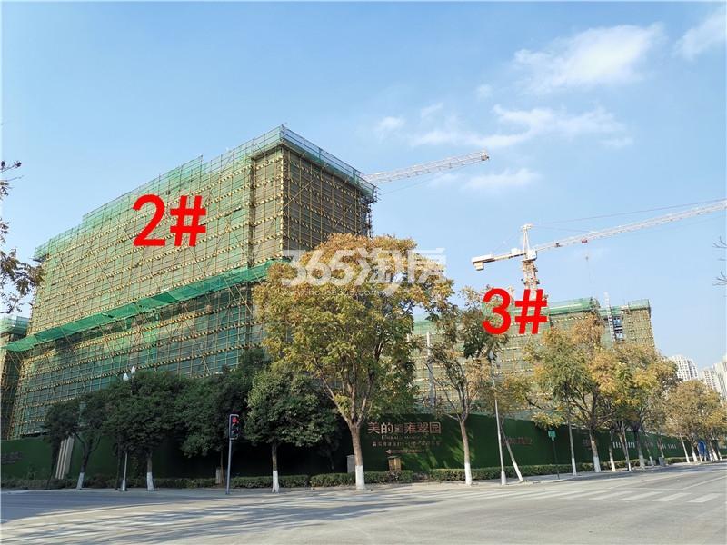 美的雍翠园在建2、3#楼实景图(11.26)