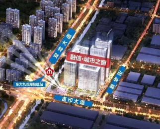 仅此一套 3号线东大九龙湖 地铁上盖 融信城市之窗 4.8米挑高公寓