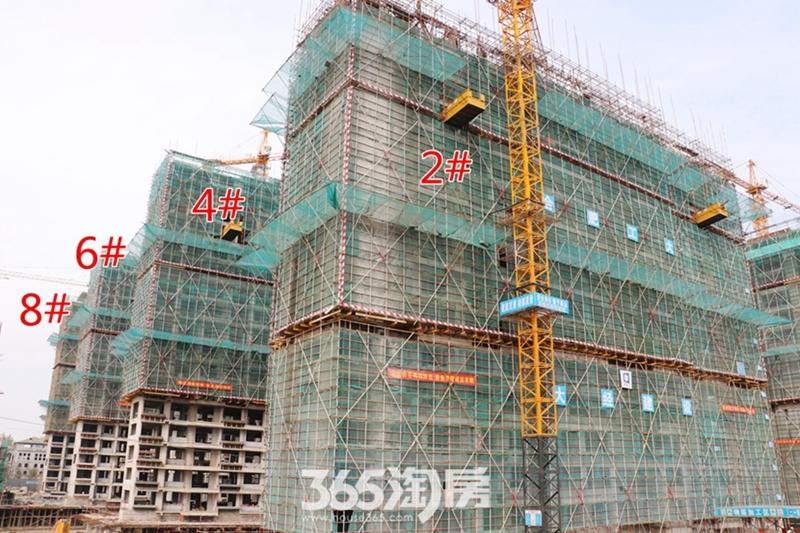 伟星芜湖院子2#4#6#8#工程进度(2019.3)