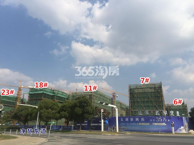 远洋·太湖宸章实景图