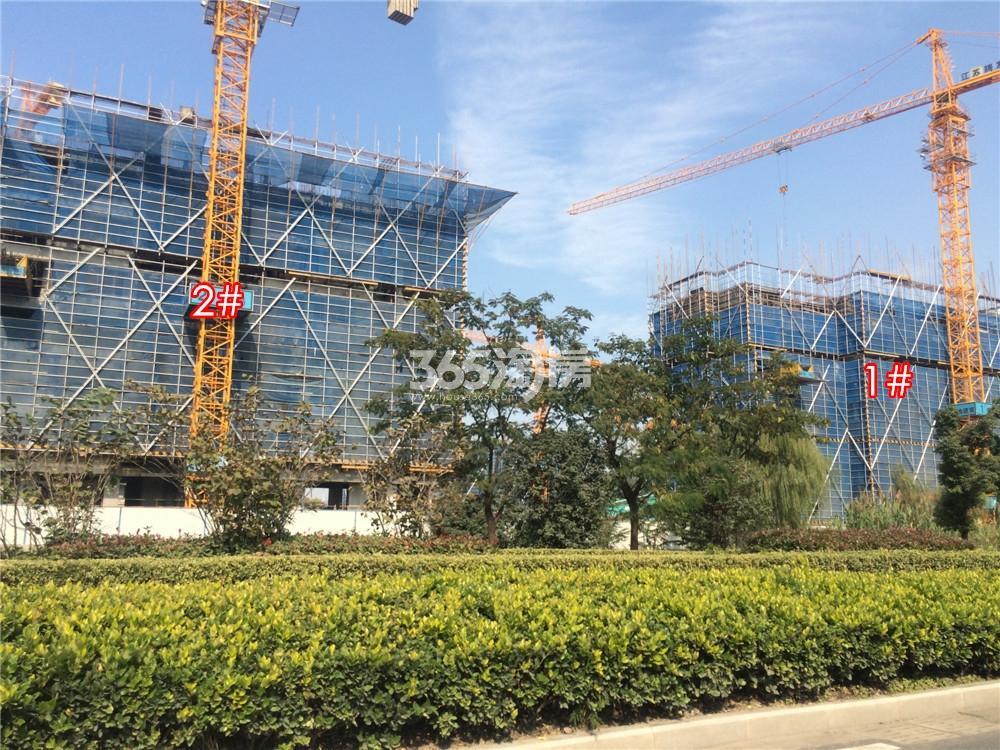 绿地华侨城海珀滨江1、2号楼实景图(11.21)