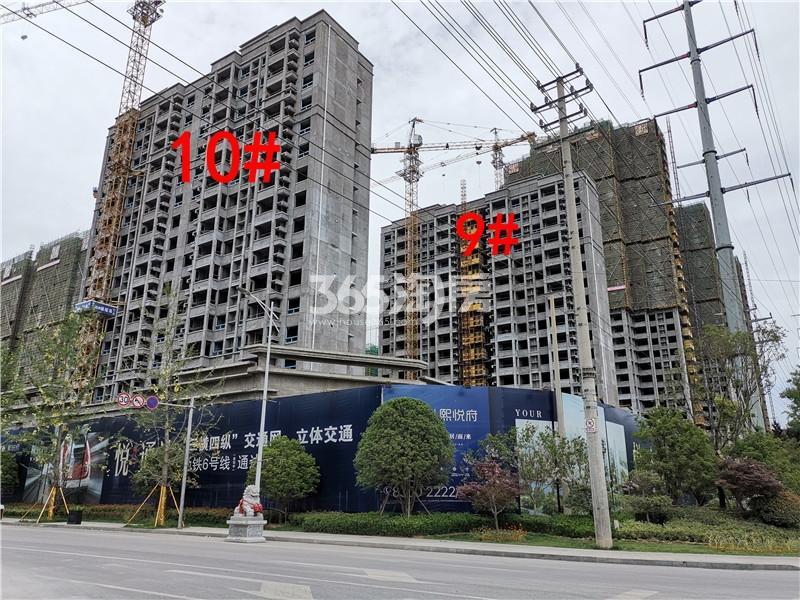 珍宝岛熙悦府10、9#楼实景图(5.30)