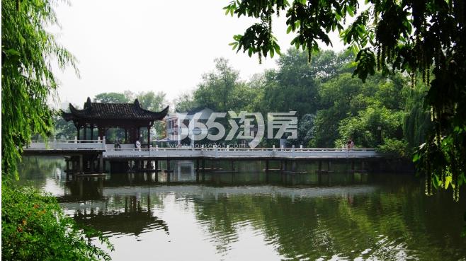 东方樾府周边配套包公园绿意实景图(2018.1.1)