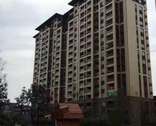 公园大道南北通透+次顶楼 +稀缺户+低于市价10万+无敌视野