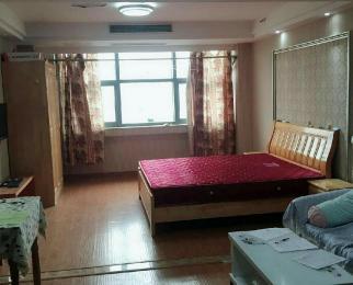 金陵天成1室1厅1卫58平米整租精装