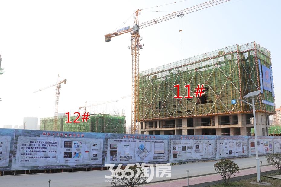 皖新春江明月11#12#工程进度(2018.10月摄)