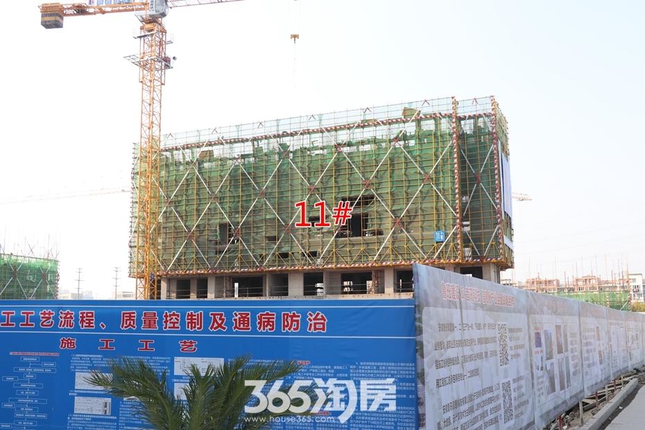 皖新春江明月11#工程进度(2018.10月摄)