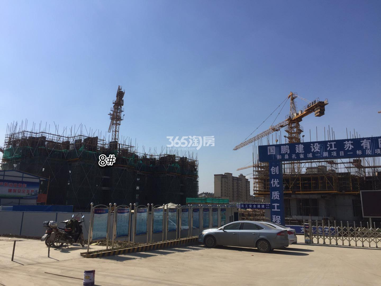 长江熙岸孔雀城8号楼实景图(11.24)