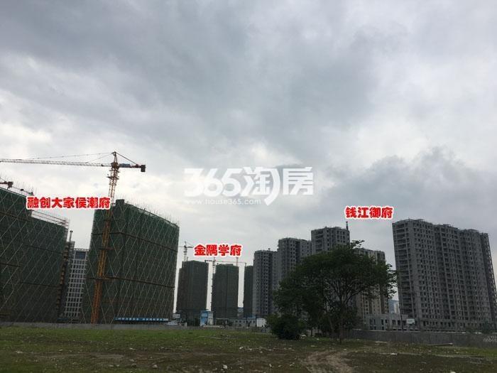 钱江御府实景图